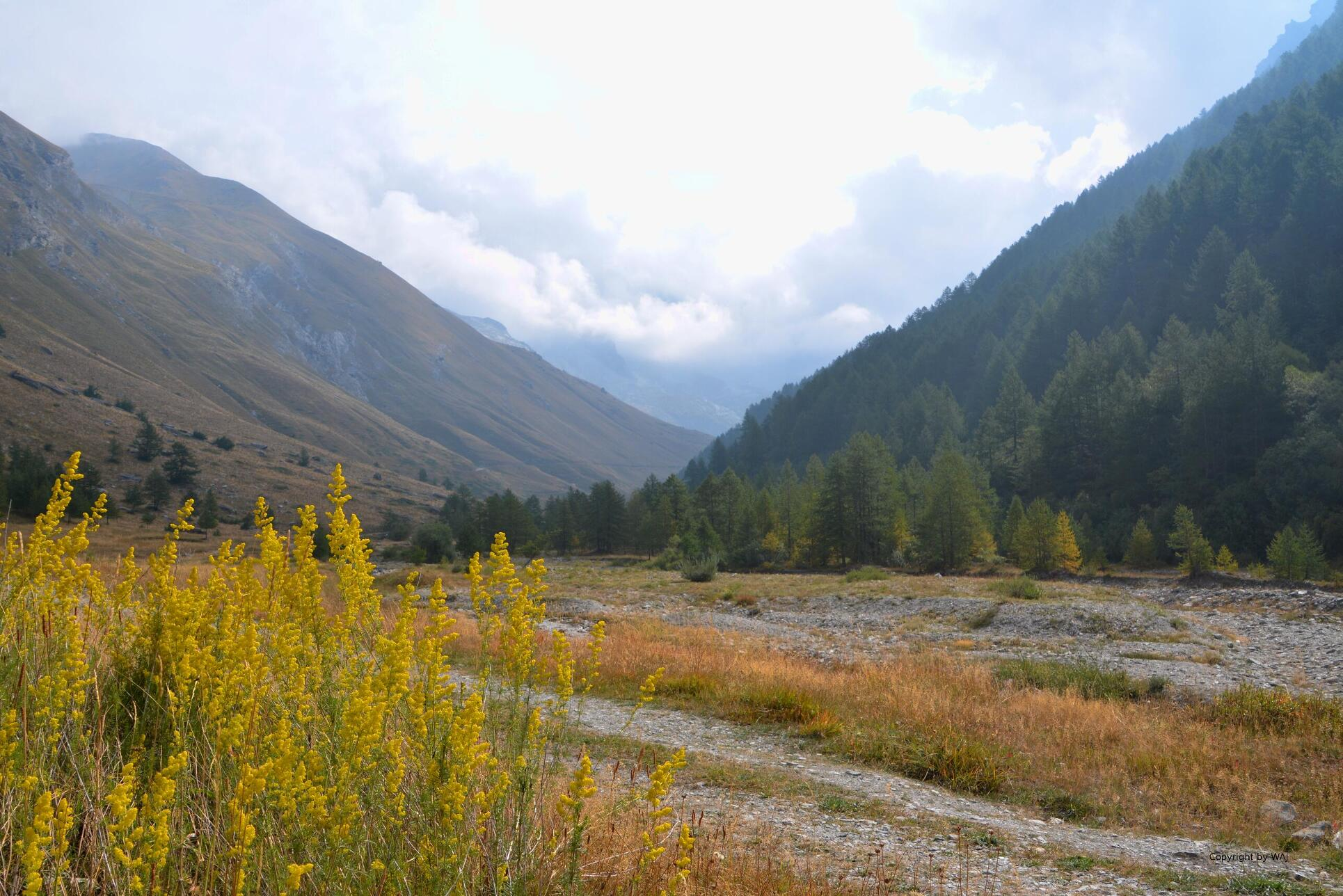 Talblick vom Lago d'Rochemolles aus