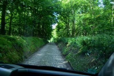Tief eingefahrene Straße im Wald