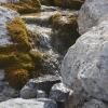 Idyllische Wasserfälle gibt es auch im Miniaturformat!