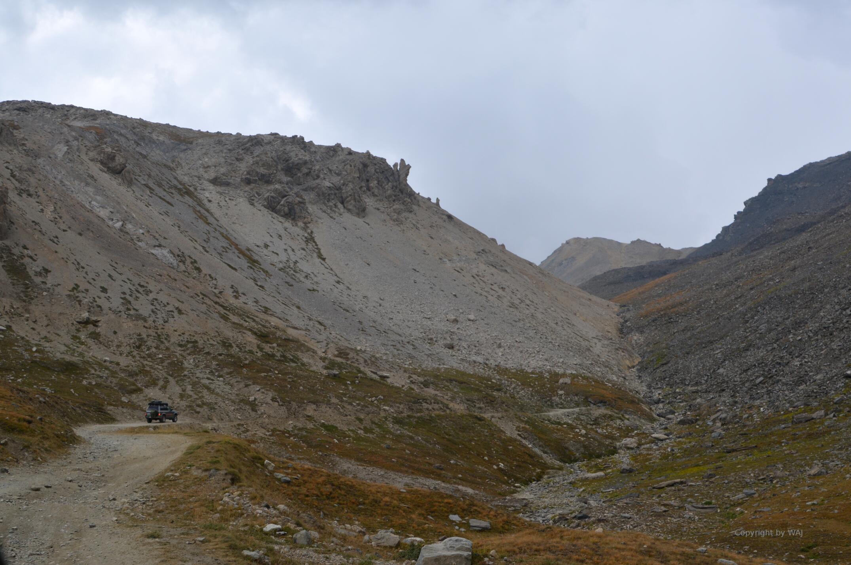 Vegetationsgrenze am Monte Sommeiller