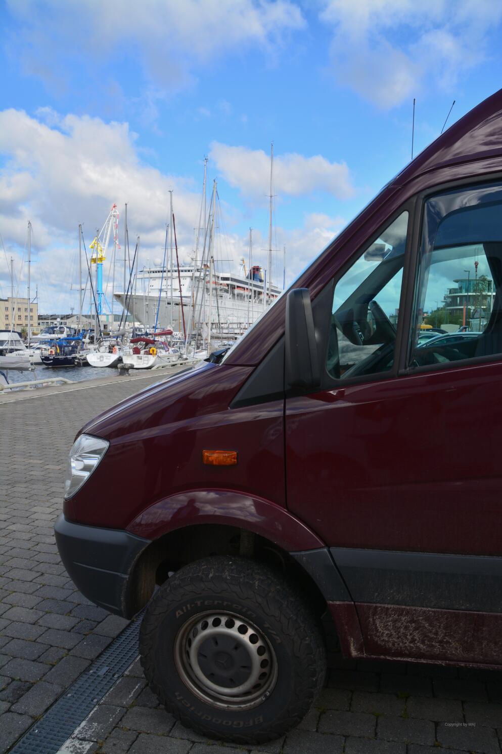 Illustre Gesellschaft am Parkplatz