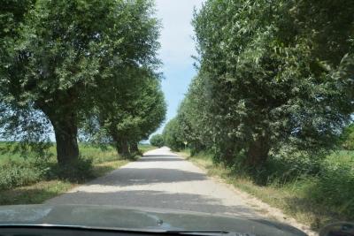 Die Inselstraßen sind Schotterstraßen, ...
