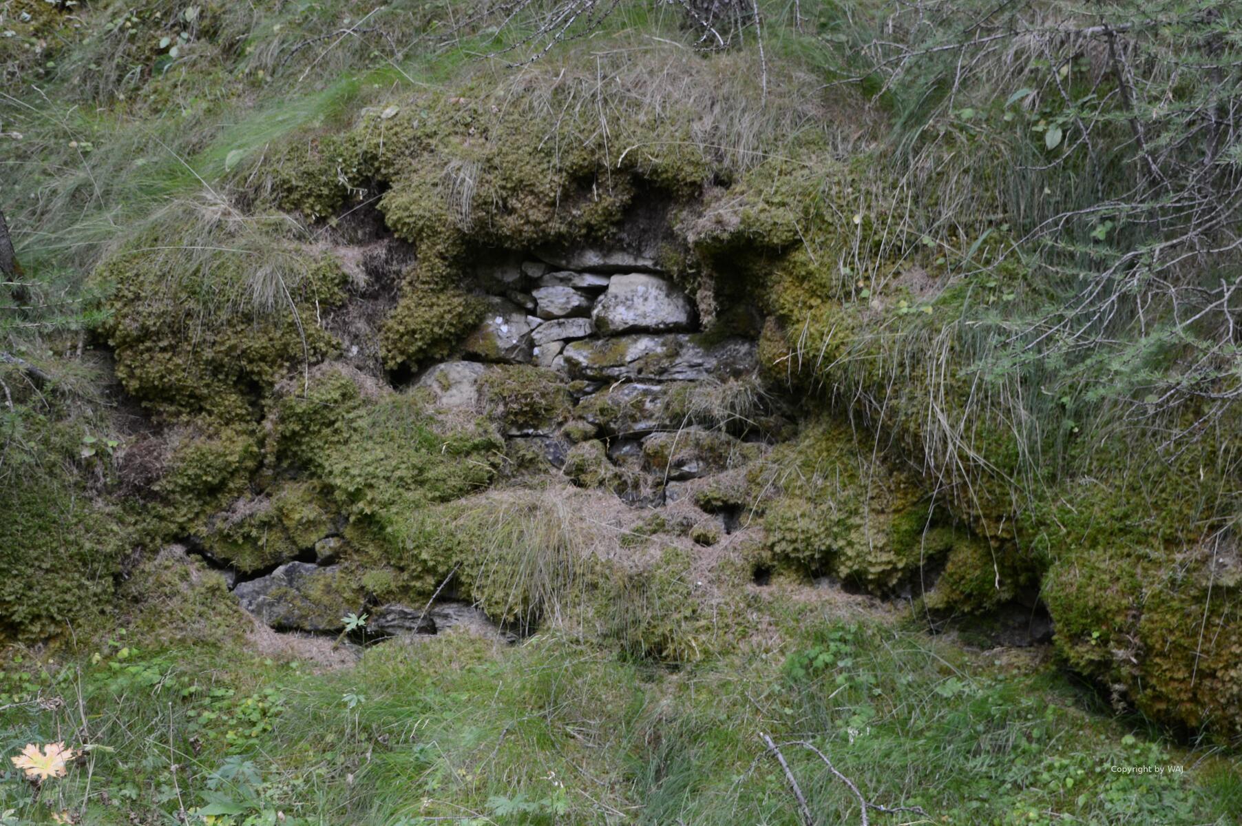 Die Natur erobert das Fort zurück...