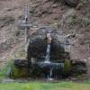 Malerischer Waldbrunnen