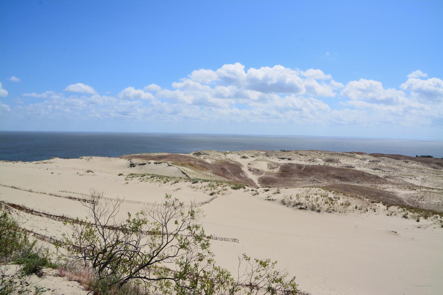 Die Düne fällt steil zur Haffküste ab.