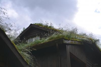 Traditionelle Grasdächer