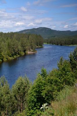 Wasser, Wald und Weite...
