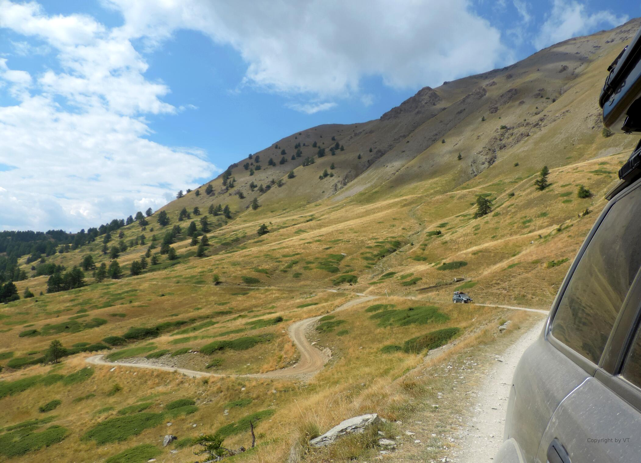 Baumgrenze am Monte Jafferau